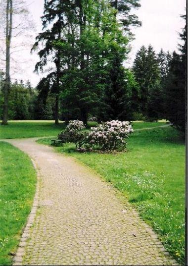 lázeňský park: ideální pro klidné procházky