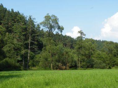Údolí Brtnice