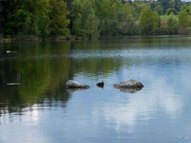 rybník Velký Pálenec